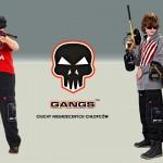 gangs_3_2016