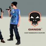 gangs_4_2016